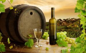 Panagyurishte Tour - Thracian Gold Treasure And Wine Tasting Packages